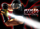 Artwork zu Ninja Gaiden: Dragon Sword