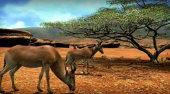 Screenshot zu Africa