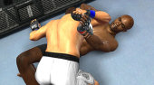 Screenshot zu UFC 2009