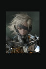 Artwork zu Metal Gear Rising