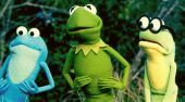 Film-Szenenbild zu Kermit's Swamp Years