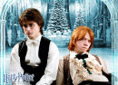 Wallpaper zu Harry Potter 4