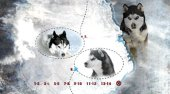 zu Eight Below