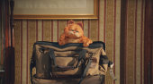 Film-Szenenbild zu Garfield 2