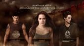 zu Twilight: New Moon