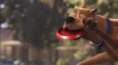 Film-Szenenbild zu Scooby Doo 3