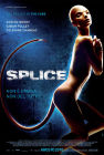 Artwork zu Splice
