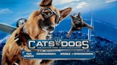 zu Cats & Dogs 2