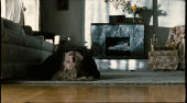 Film-Szenenbild zu The Possession