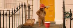Film-Szenenbild zu Paddington 2