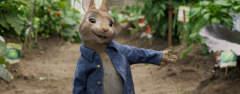Film-Szenenbild zu Peter Rabbit