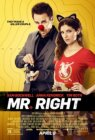 Mr. Right (2015/I)
